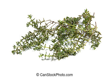 Small Twigs of Fresh Thyme on White - small twigs of fresh...