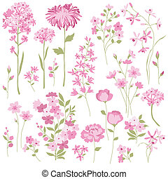 Hand Drawn Flowers clipart - A collection of hand drawn...
