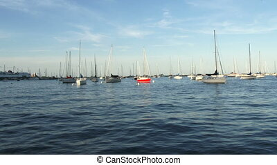 Sailing boats docked in Chicago - Sailing boats docked on...