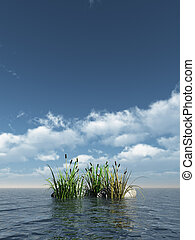 reed and stones at the ocean - 3d illustration