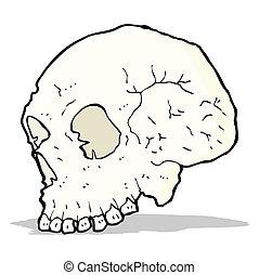 skull illustration