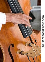 Bass Fiddle Player - A mans hand plucks a bass fiddle