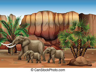 Elephants at the desert - Illustration of the elephants at...