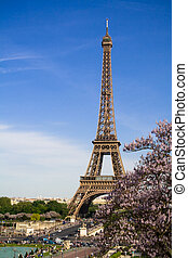 The Eiffel Tower. Spring time.