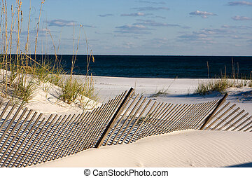 Sand Fence Along The Gulf Coast, Florida - Sand fences along...