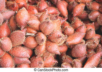 Fresh salacca edulis salak palm fruit. - Fresh salacca...
