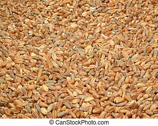 grain background