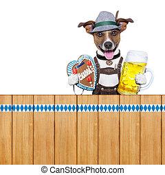 bavarian beer dog - bavarian dog above a wooden fence...