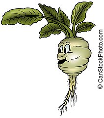 Kohlrabi - colored cartoon illustration