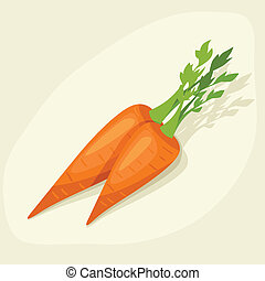 Stylized vector illustration of fresh ripe carrots