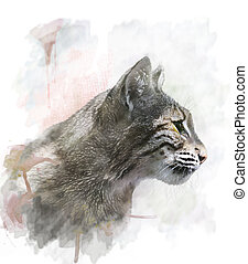 Watercolor Image Of Bobcat - Watercolor Digital Painting Of...
