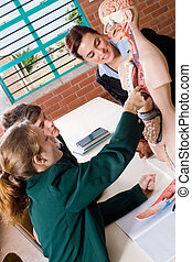 learning biology - learning about the body functions in...