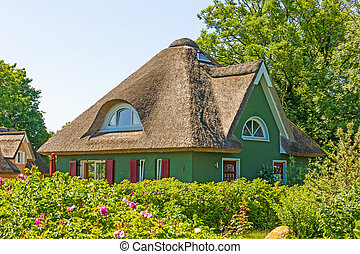 thatched-roof vacation home - green painted thatched-roof...