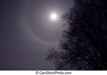 Halo Moon - A nice midnight shot from the top of my local...