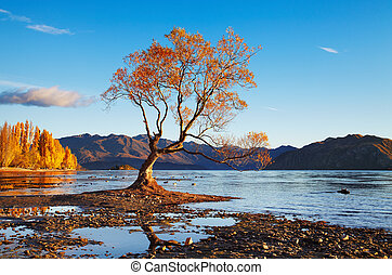 Lake Wanaka, New Zealand - Autumn landscape, lake Wanaka,...
