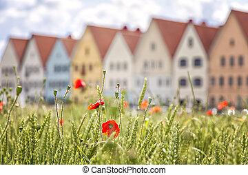 Jakriborg Sweden - Image of colourful houses in Jakribog,...
