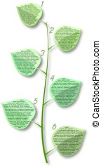 Flover stem with leafs with places for text - Flover stem...