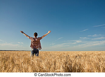 young man in the wheat field - young man stands in field and...