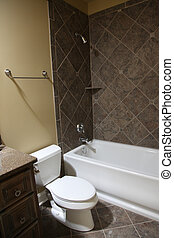 Tennesee Home Guest Bathroom - Image of a million dollar...