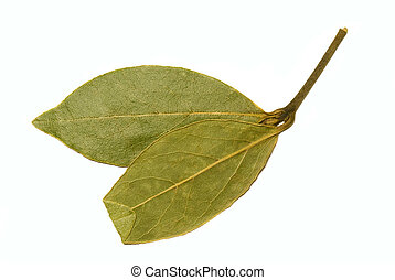 Bay leaf - Bay leaf,isolated over white Shot for culinary...