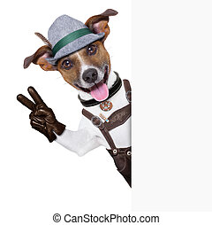 oktoberfest dog smiling happy with peace or victory fingers...