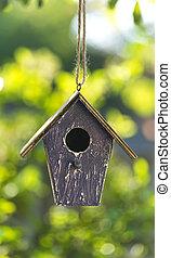 Bird House in Summer Sunshine & Green Leaves