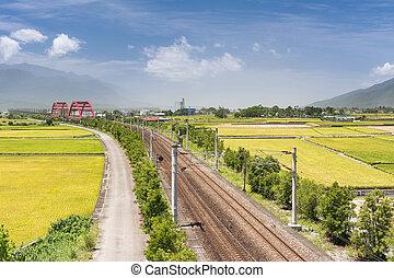 Landscape of paddy farm under blue sky in Hualien, Taiwan,...