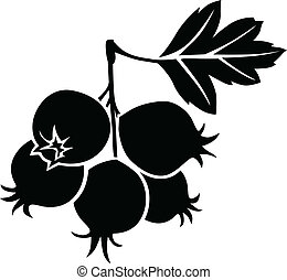 Hawthorn berries - Silhouette black and white image of...