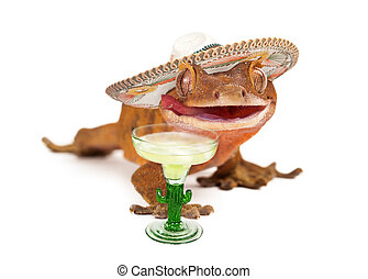 Crested gecko wearing sombrero with margarita - A funny...