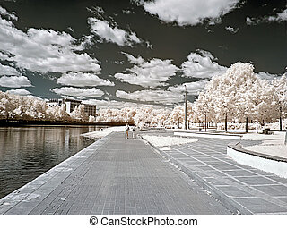 Ashore lake Infrared photo - Shore of the Large Grafskogo...
