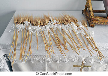 ears of corn for the rite of communion