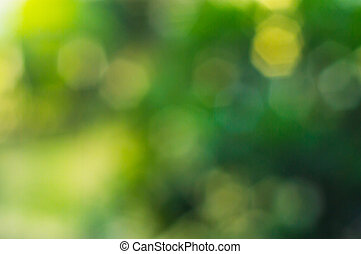 Green polygon bokeh of the tree - The Green polygon bokeh of...