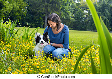 Border collie friendship