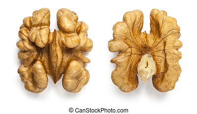 walnut - Kernel walnut isolated on the white background...