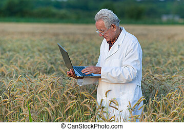 Agronomist with laptop - Experienced agronomist holding...
