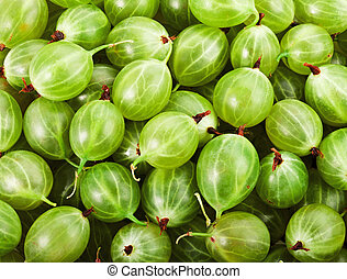 gooseberries - Fresh green gooseberries frame background