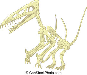 Pteronodon skeleton cartoon - Vector illustration of...