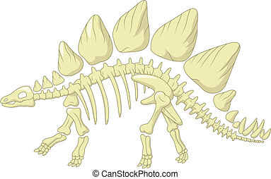 Cartoon Stegosaurus skeleton - Vector illustration of...