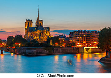 Cathedral of Notre Dame de Paris at sunset - The southern...