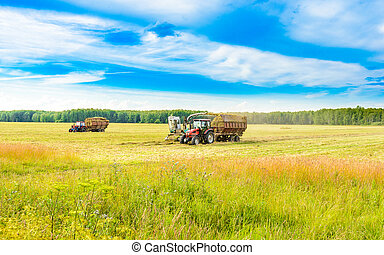 tractor with a hay - tractor removes the hay in the field