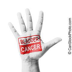 abertos, mão, levantado, bexiga, câncer, sinal,...