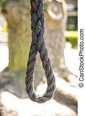 noose outside in tree