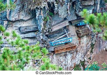 The hanging coffins of Sagada - Close-up picture of a...