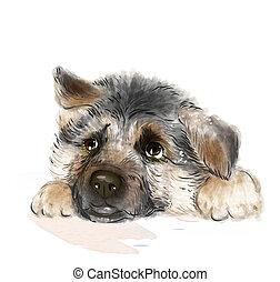 Retrato, alemão, pastor, Filhote cachorro