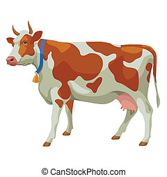 Brown and white cow, side view, isolated - Brown and white...