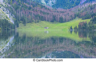 Obersee Landscape, Bavarian Scenery - The beautiful Obersee...