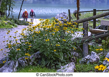 Hikers in Bavaria, Germany - Hikers near Konigssee King lake...