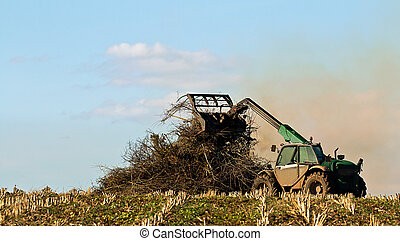 Crop Residue Burning - Famer burning crop residue on bonfire...
