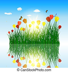 Tulips in grass with reflection in water