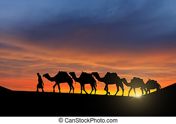 Desert caravan - Camel caravan moving in Sahara desert at...